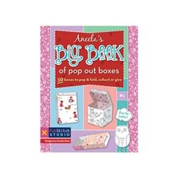Aneela's Big Book of Pop Out Boxes by Aneela Hoey