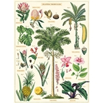 "Cavallini Decorative Paper - Tropical Plants 20""x28"" Sheet"