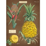 "Cavallini Decorative Paper - Pineapple 20""x28"" Sheet"