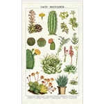 Cavallini Tea Towel- Cacti & Succulents