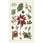 Cavallini Tea Towel- Christmas Botanical