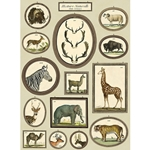 "Cavallini Decorative Paper - Natural History Animals 20""x28"" Sheet"