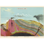 "Cavallini Decorative Paper - Geological Chart 20""x28"" Sheet"