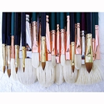 Daniel Greene Master Portraiture Set of 27 Silver Brushes