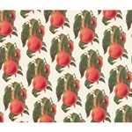 Rossi Decorative Paper from Italy- Peaches 28x40 Inch Sheet