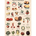 "Cavallini Decorative Paper - Fruits and Vegetables 20""x28"" Sheet"